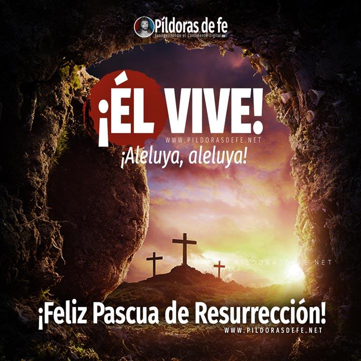 Píldoras de fe en Instagram. Feliz Pascua de Resurrección. Domingo de Pascua
