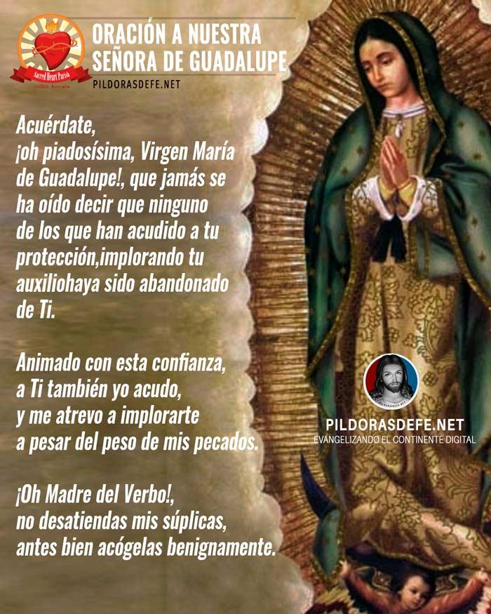 Oración a Nuestra Señora de Guadalupe ante su imagen