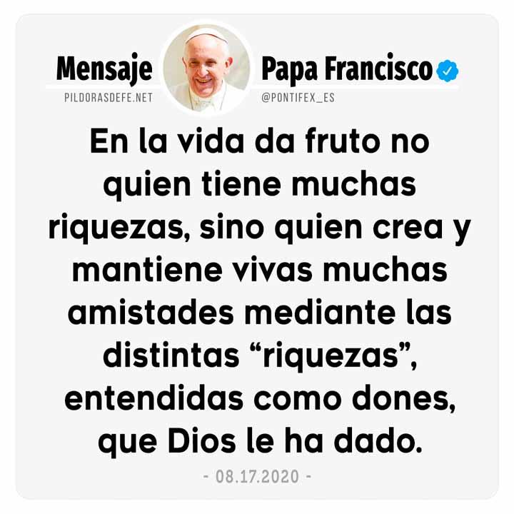 Papa Francisco: No da fruto quien tiene muchas riquezas, sino quien crea y mantiene vivas muchas amistades