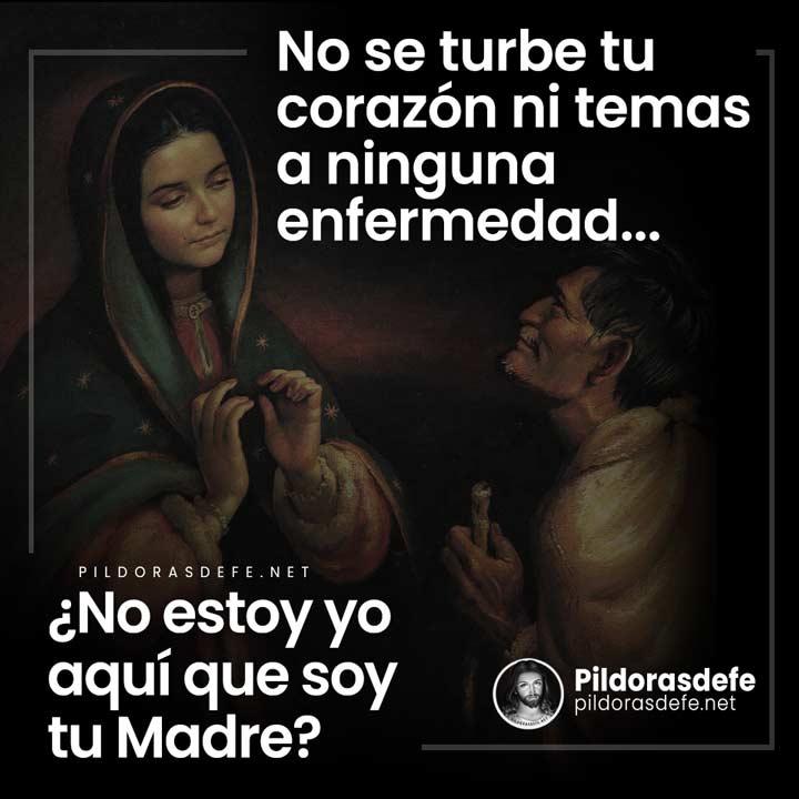 Virgen de Guadalupe a San Juan Diego: ¿No estoy yo aquí que soy tu Madre?
