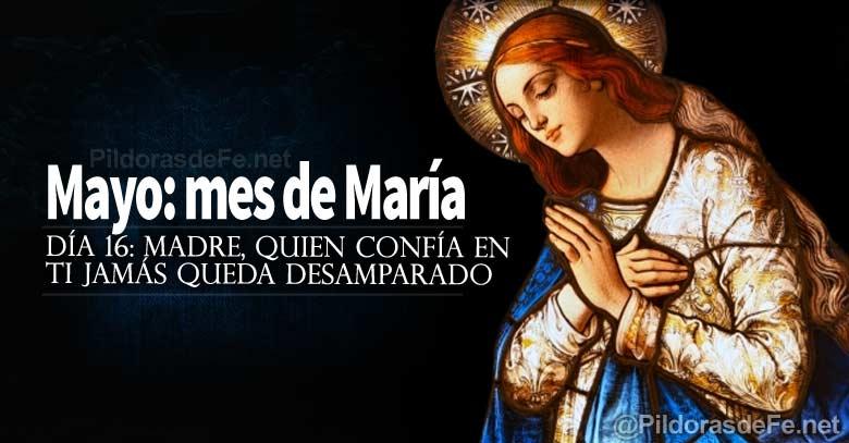 mayo mes de la virgen maria madre quien confia en ti jamas queda desamparado dia