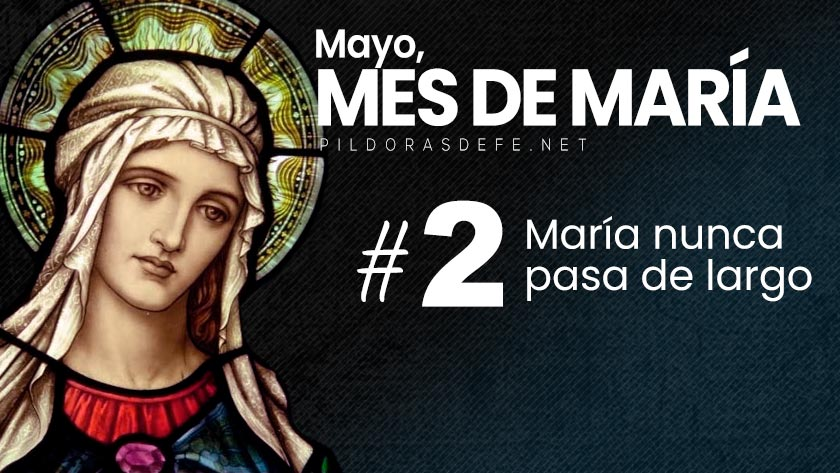 mayo mes de maria dia  virgen maria no pasa de largo