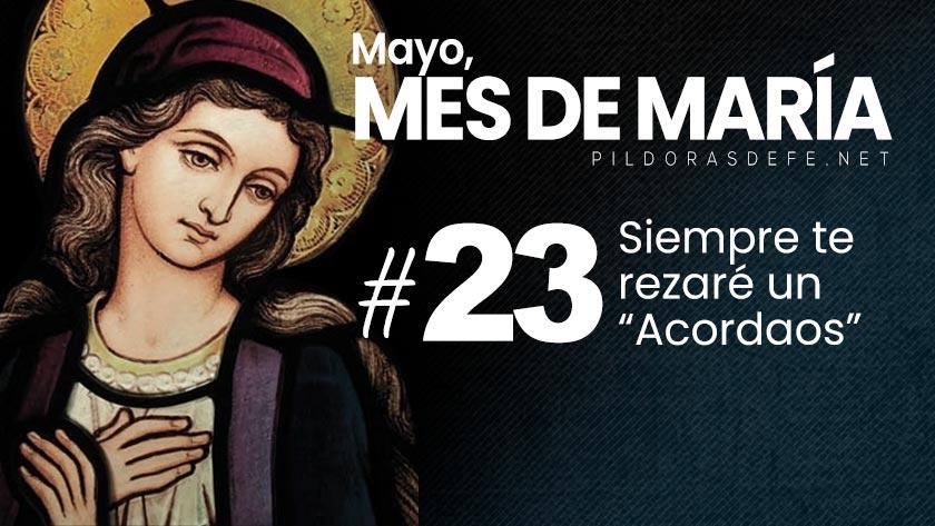 mayo mes de maria dia  virgen siempre rezar el acordaos