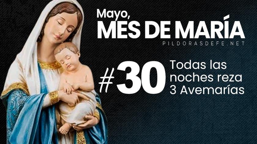mayo mes de maria dia  cada noche rezar tres avemarias