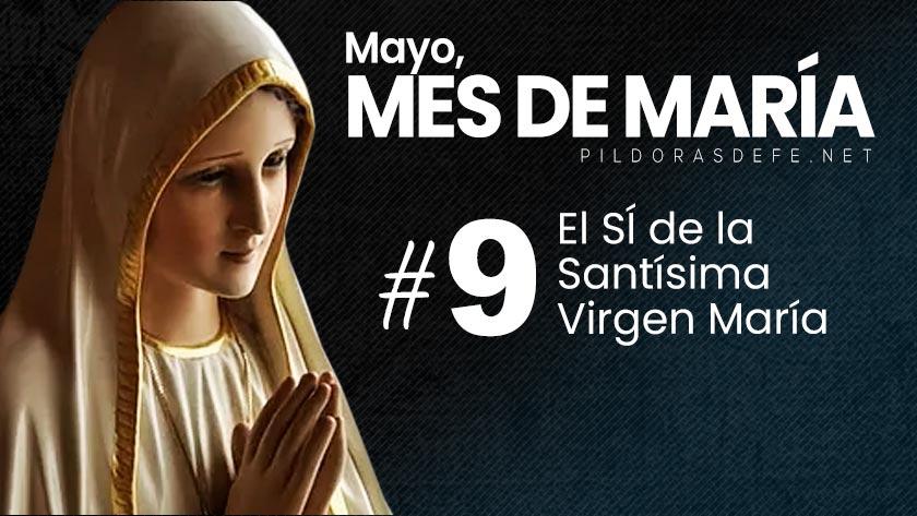 mayo-mes-de-maria-dia-9-el-si-de-la-santisima-virgen.jpg