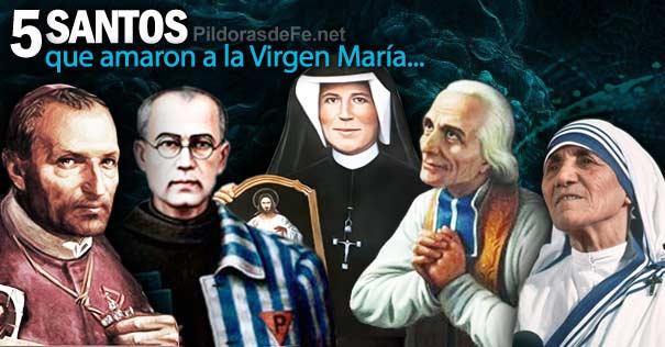 santos aman virgen maria faustina ligorio maximiliano kolbe vianney teresa calcuta