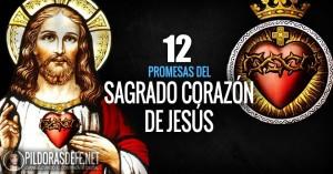 sagrado corazon de jesus  promesas significado devocion