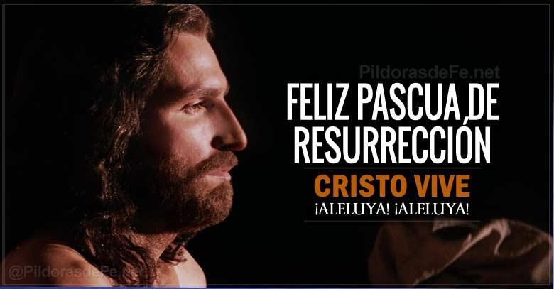 Feliz Pascua De Resurrección Cristo Vive Aleluya Aleluya