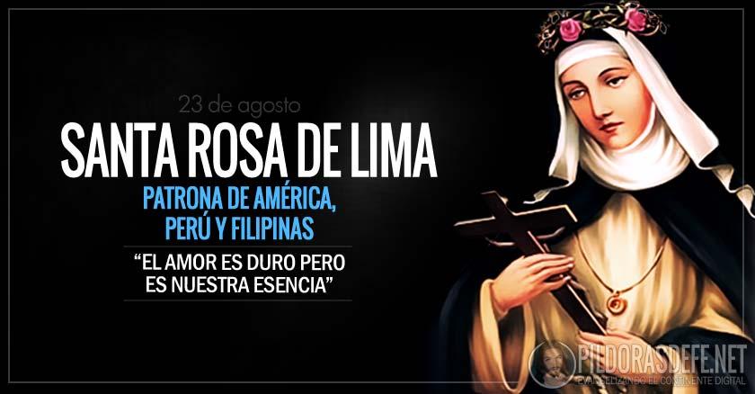 santa rosa de lima patrona de america pery y filipinas la mas bella rosa