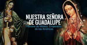 nuestra senora de guadalupe virgen patrona de mexico emperatriz de las americas