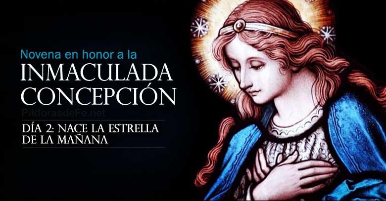 novena a la inmaculada concepcion de maria dia  nace la estrella de la manana
