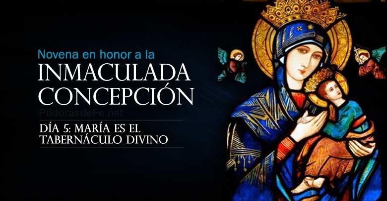 novena a la inmaculada concepcion de maria dia  es tabernaculo divino
