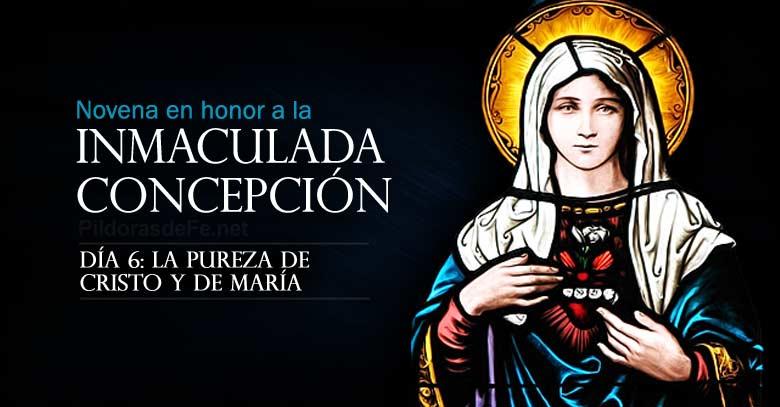 novena a la inmaculada concepcion de maria dia  pureza de cristo y de maria