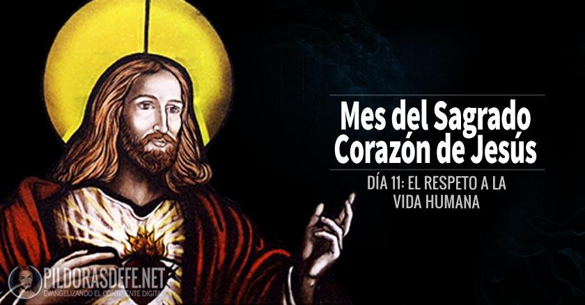 sagrado corazon de jesus dia  el desprecio a la vida humana