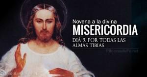 novena a la divina misericordia dia  por todas las almas tibias