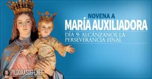 novena a la virgen maria auxiliadora alcanzanos la perseverancia final dia