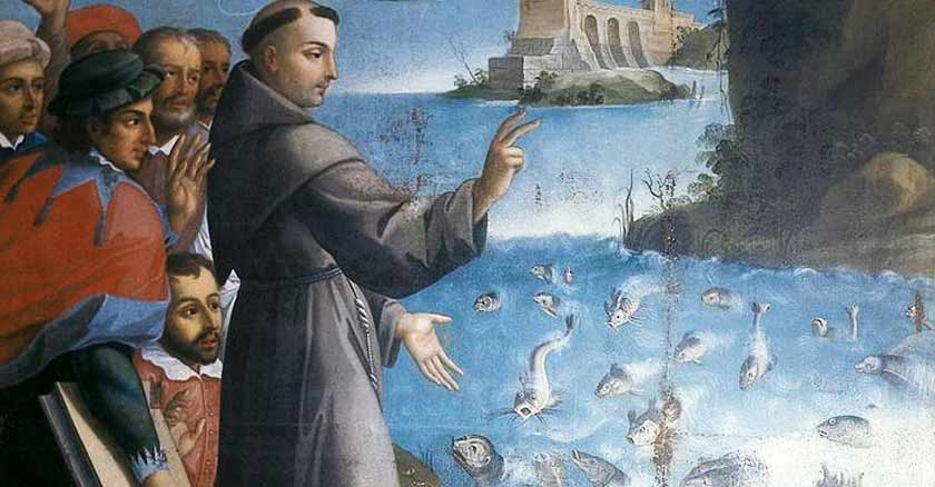 Saint Anthony of Padua and the miracle of the fish