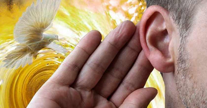 oido-prestar-atencion-paloma-escuchar-dulce-voz-del-espiritu-santo.jpg