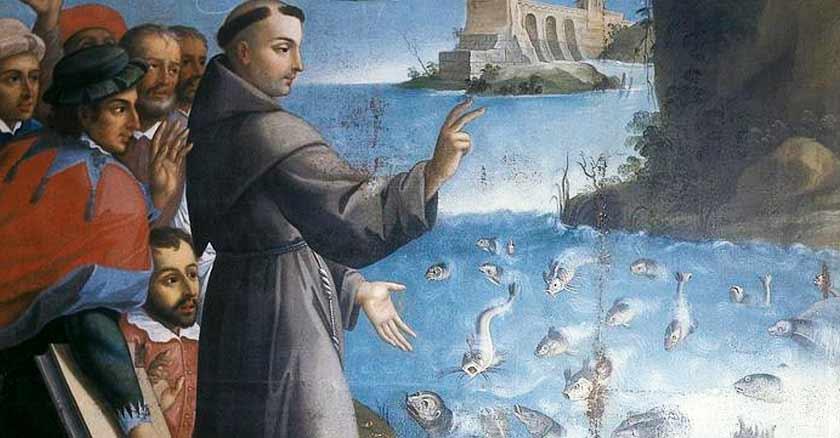 san antonio de padua el milagro de los peces predicacion