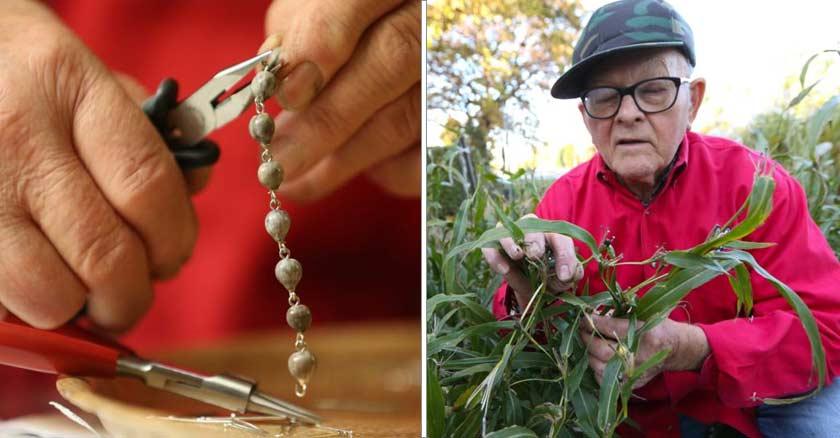 anciano recogiendo semillas de su jardin cultiva las cuentas de los rosarios